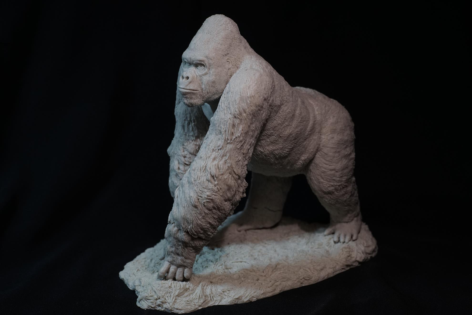 西部大猩猩,藝術家:李子奇:叢林裡的巨猩,天生王者