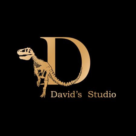 Picture for vendor David's Studio