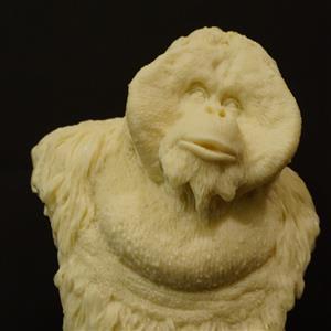 紅毛猩猩 Top sculpture 造物藝術 胸像